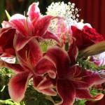 mistrzostwa-florystyczne
